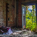 Squatters Bedroom Window