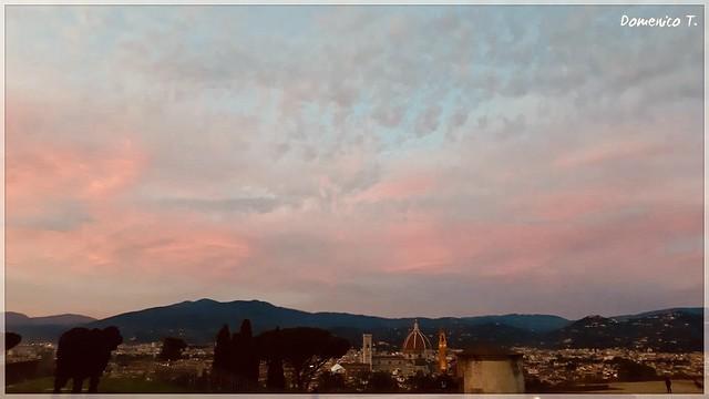 Rosa di sera - Pink of evening