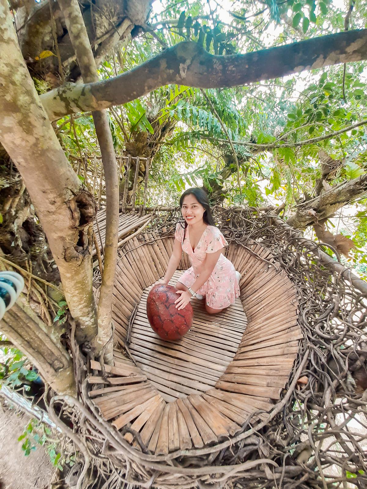 Sirao Nest