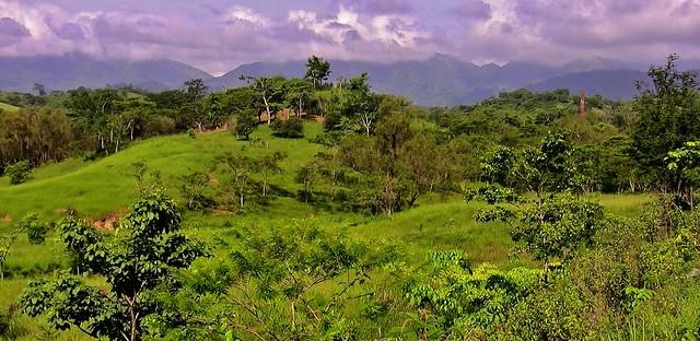 MEXICO, Yucatán ,  Quer durch Chiapas,  so green,  19320/12002