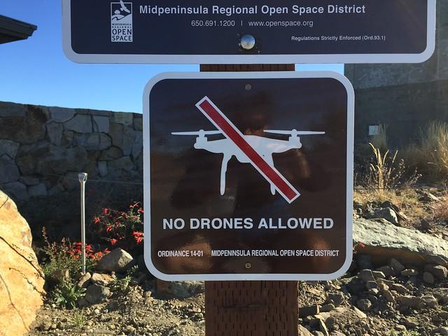 No Drones Allowed!