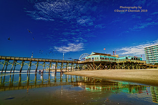 Sunrise A Very Colorful Pier 14 Restaurant & Lounge Birds Families In The Beach and Surf Reflections (3382) Myrtle Beach, SC 9-24-2019.