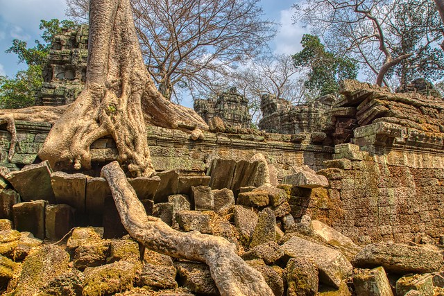 Ruins of Ta Prohm a.k.a. Jungle Temple near Siem Reap, Cambodia