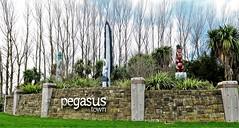 Pegasus Pou