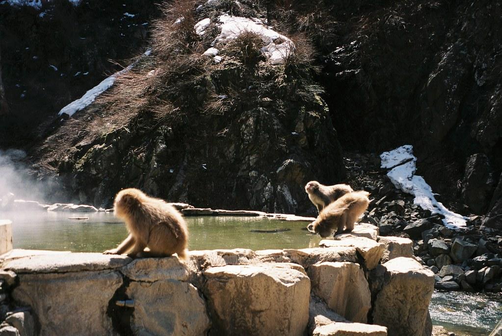 Yamanouchi, Nagano