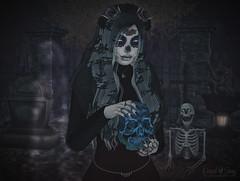 Noche de Los Muertos - Trick or Treat Lane