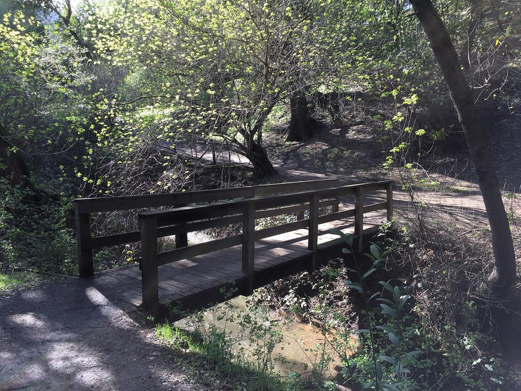 Lower Meadow Trail