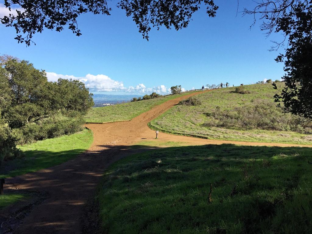 High Meadow Vista Point