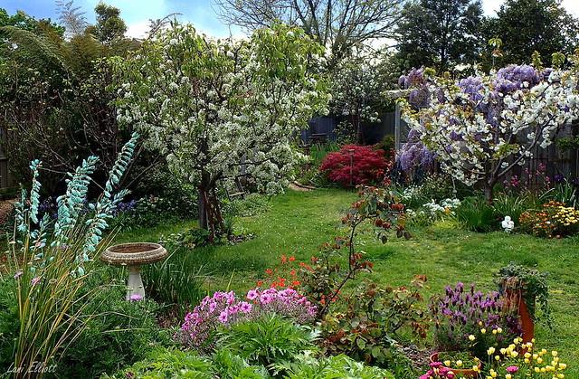 Loving Our Spring Garden