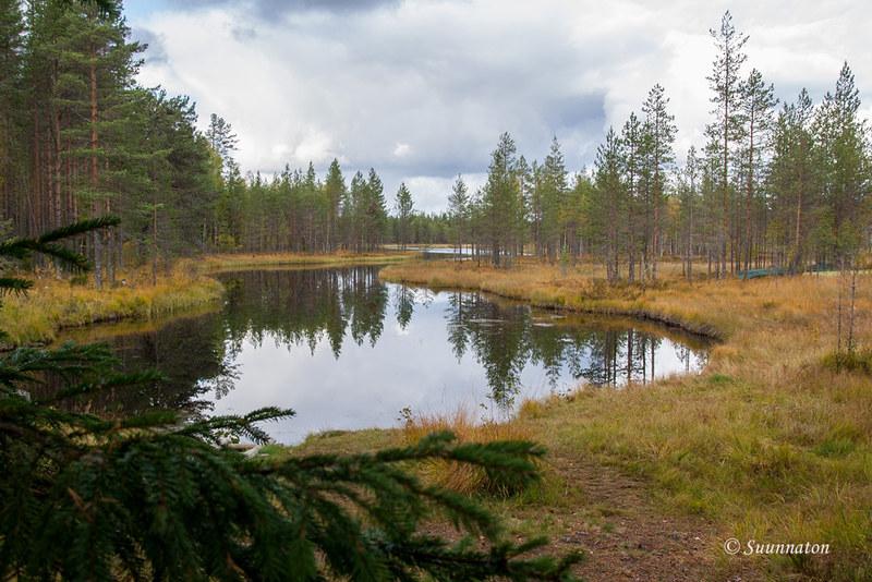 Tiilikkajärven kansallispuisto (23)