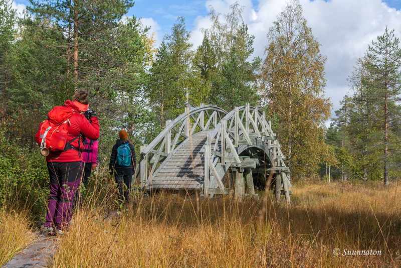 Tiilikkajärven kansallispuisto (8)
