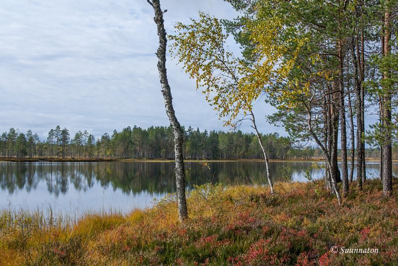 Tiilikkajärven kansallispuisto (4)