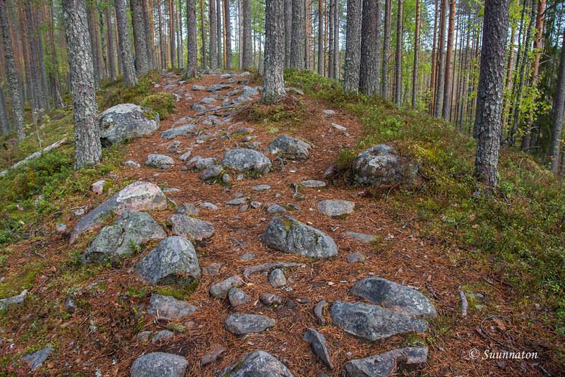 Tiilikkajärven kansallispuisto (28)