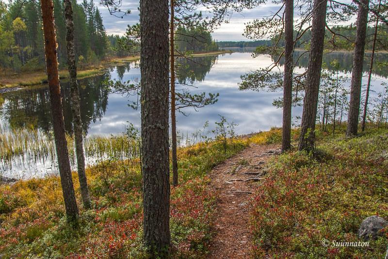Tiilikkajärven kansallispuisto (27)