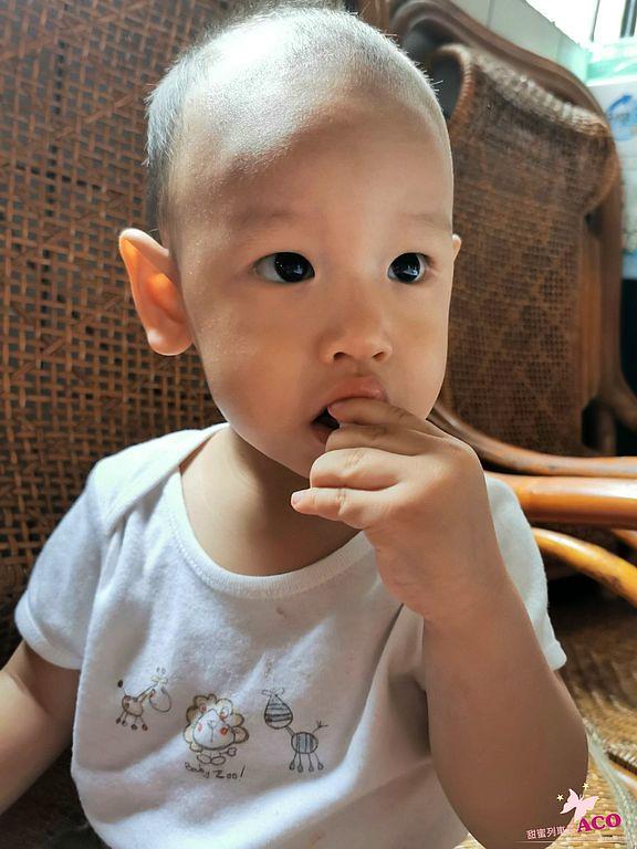 嬰兒餅乾49