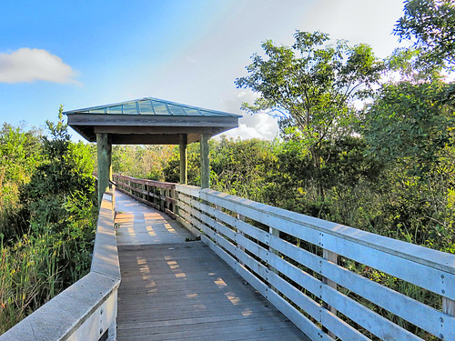 Chapel Trail boardwalk 04-20191005