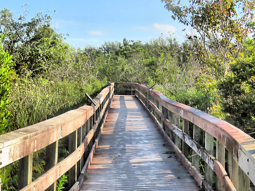 Chapel Trail boardwalk 02-20191005