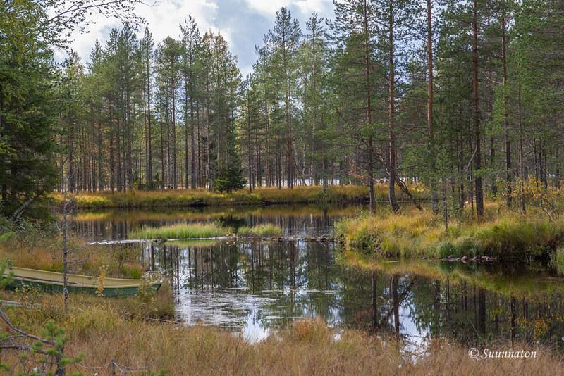 Tiilikkajärven kansallispuisto (22)