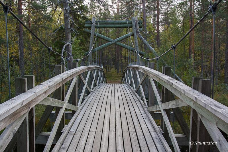 Tiilikkajärven kansallispuisto (12)