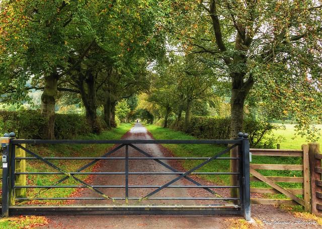 Walk through Haystoun Estate-7079
