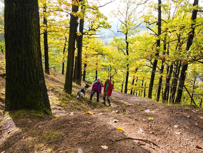 Góry Sowie jesienią