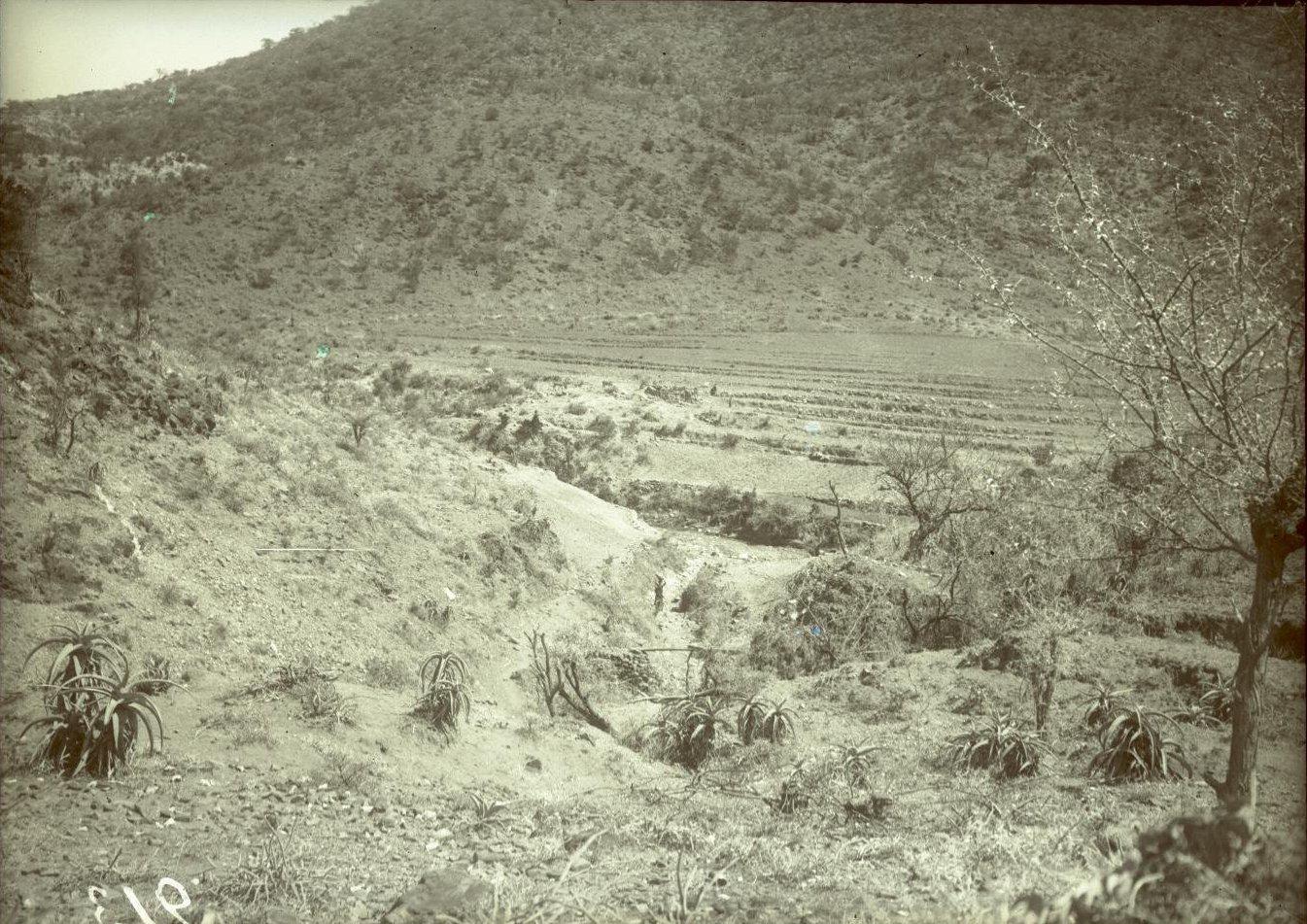 213. 1899. Абиссиния. Гильдесса. Искусственные террасы