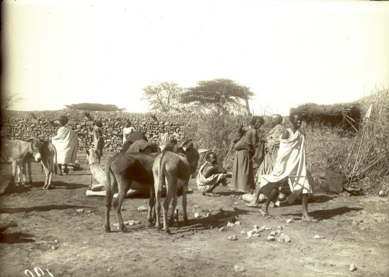190. 1899. Абиссиния. Гильдесса. Уголок на базаре