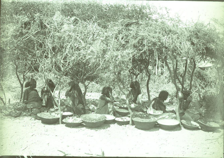 186. 1899. Абиссиния. Гильдесса. Бабы на базаре
