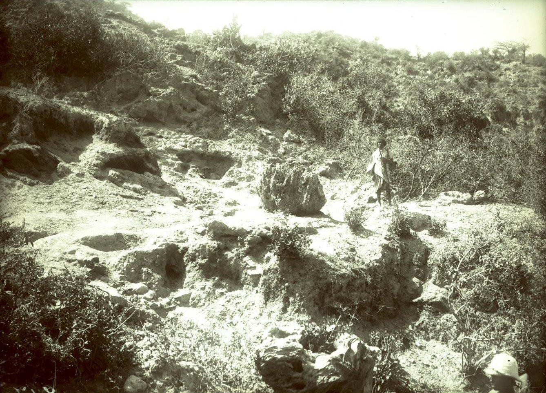 217. 1899. Абиссиния. Гильдесса. Близ Беляуа