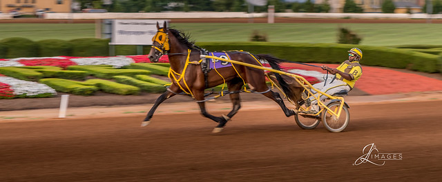 Harness Racing at the Red Mile