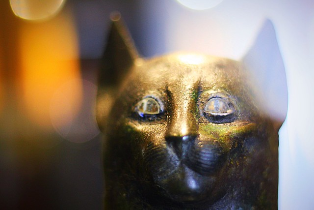Egyptian Cat- Mummies in Bruges
