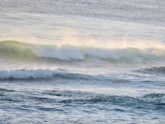 Morning Wave (reflection below)