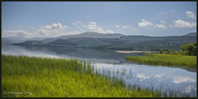 Landscape DSC_3680