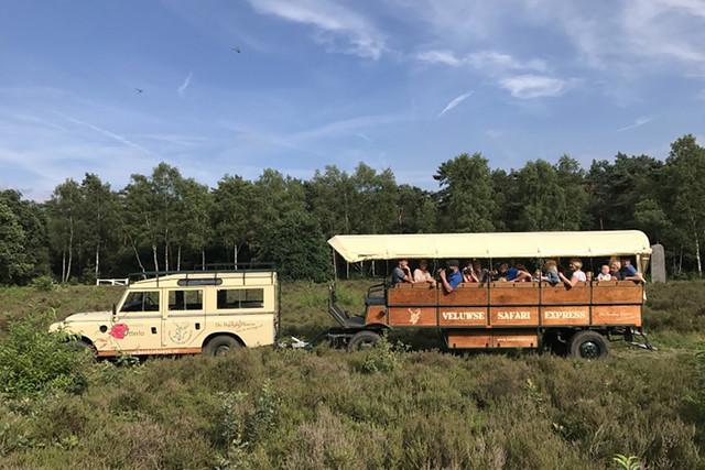OtterloDeWaldhoorn-17