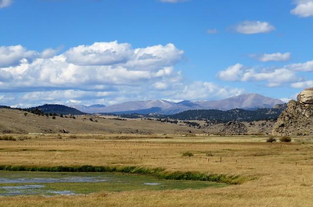 Tarryall Wetland