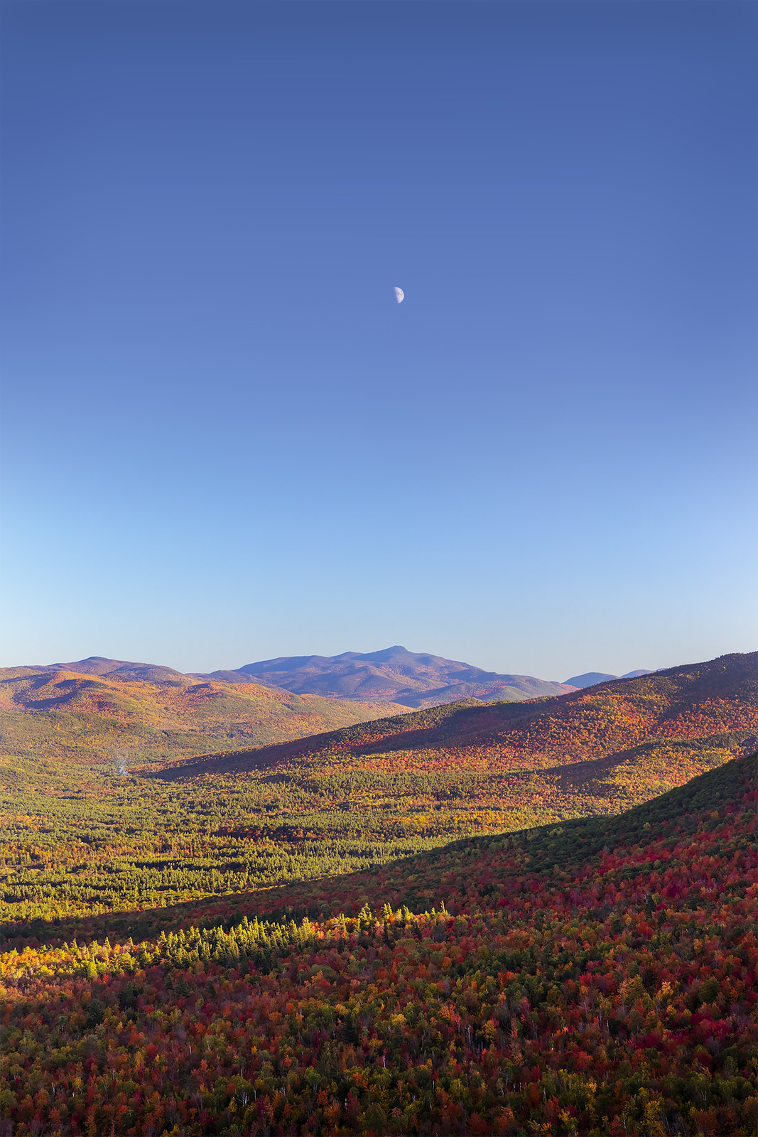 Gotta love when heaven and earth align- the moon setting over Mt. Jo on a perfect fall evening. [OC] [1067x1600]