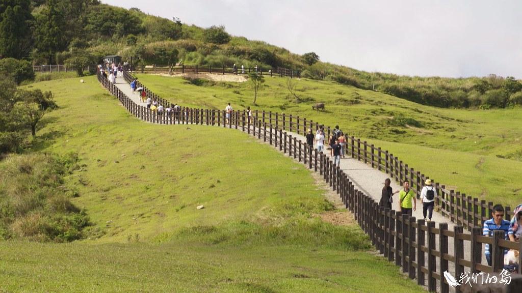 有別於過去僅用繩索分隔人牛,方便牛隻穿越,新步道採用水泥樁來分隔。