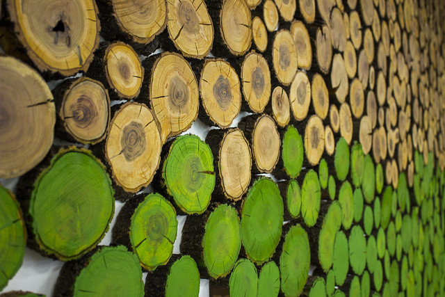 Decorative Wooden Accent Wall