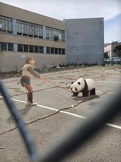 Bad Panda!