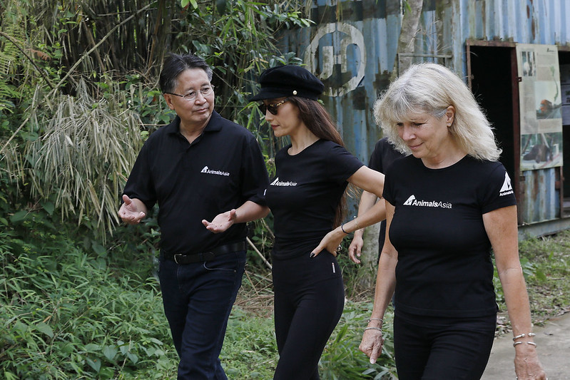 (From R to L): Animals Asia Founder and CEO Jill Robinson MBE, Maggie Q, and Vietnam Director Tuan Bendixsen