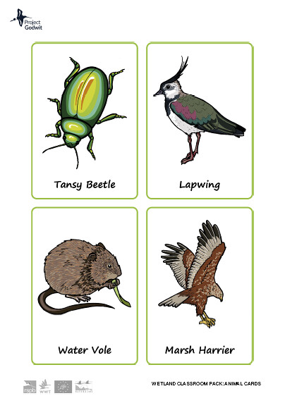 Fenland Animal Cards
