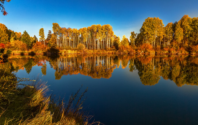 Autumn on the Deschutes River