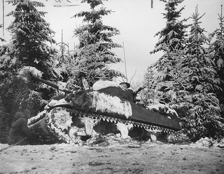M4 Sherman tank about to get towed out of a Belgian forest.