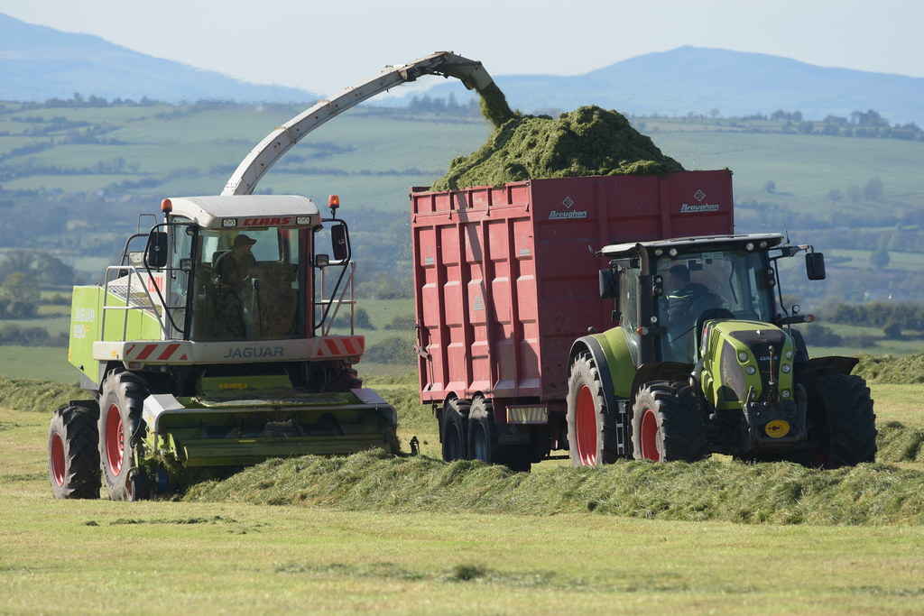 Claas Jaguar 890 SPFH filling a Broughan Engineering Mega HiSpeed Trailer drawn by a Claas Arion 650 Tractor