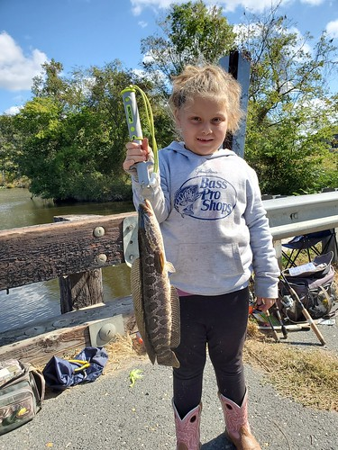 Photo of girl holding a northern snakehead