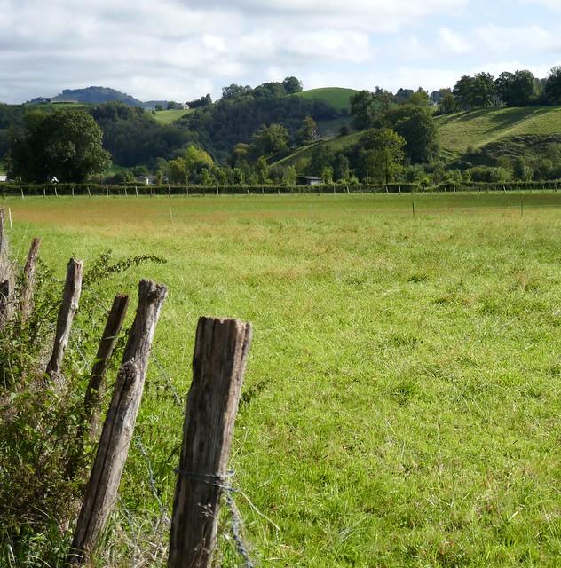 Coteaux du piémont, Arette, vallée du Barétous, Béarn, Pyrénées-Atlantiques, Nouvelle-Aquitaine, France.