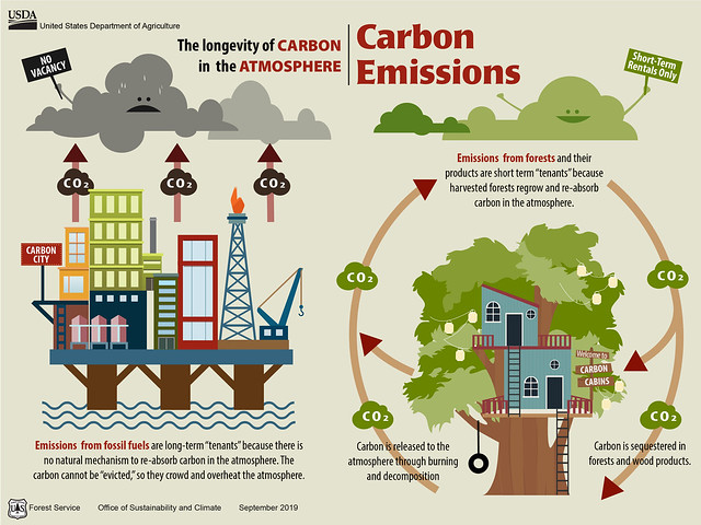 Carbon Atmosphere Cycle graphic