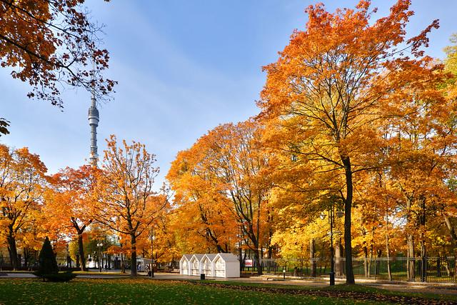 View of the Ostankino TV tower.