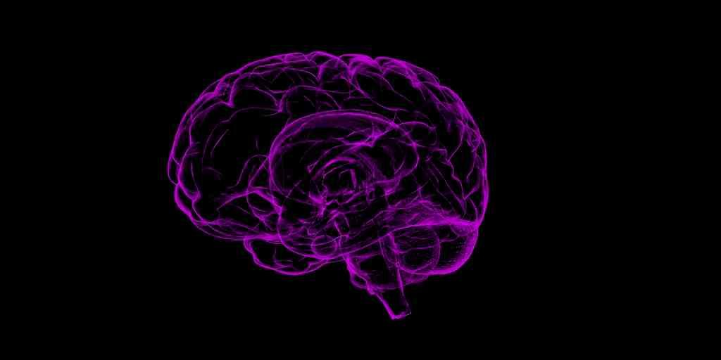 MIT-étude-plaques-amyloïdes-émergence-précoce