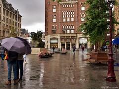 Rainy day in Amsterdam